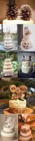 Wedding Cake Ideas Rustic 39 Unique U0026 Funny Wedding Cake Toppers Deer Pearl Flowers