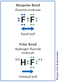 are covalent bonds polar and non polar give some examples too