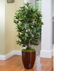 Silk Plants Direct Jade Plant Artificial Plants And Foliage For The Fall Season At