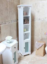 Shelving Units For Bathrooms 18 Alluring Ways To Organize A Bathroom Without Drawers And Cabinets