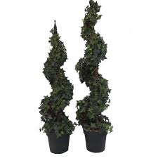 spiral topiary potted tree l c c home limited