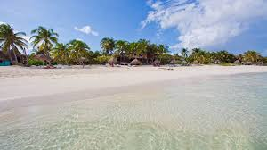 la zebra colibri boutique hotels in tulum best hotel rates vossy
