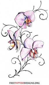 sweet pea by sue woodfine botanical art pinterest sweet