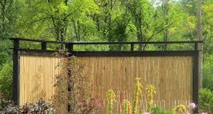fence bamboo fence exotic bamboo fence sealer u201a interesting