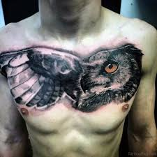 chest with big wing and owl golfian com