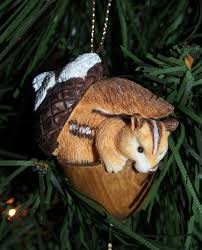 merry christmas bird brains u0026 dog tales