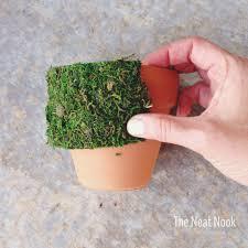 moss ribbon diy moss planters the neat nook