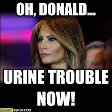 Mind Games Meme - oh donald urine trouble now just in case pinterest