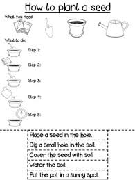 procedure writing template differentiated how to plant a seed