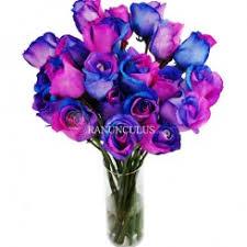tie dye roses tie dye roses rainbow roses colors