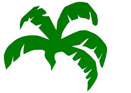 banana leaf clip art 35