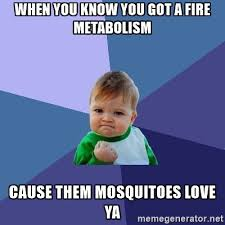 Mosquito Meme - gaseous attraction a mosquito s love story