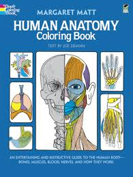 human anatomy coloring book dover children u0027s science books