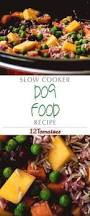 home made dog food this recipe is great for diabetic dogs and