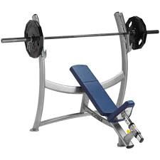 olympic style weight bench cybex olimpic incline bench gym source