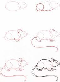 dibujos especiales para niños hazla corta u003d learning animal