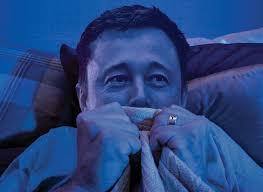 Seeking Troll Date Elon Musk Vs The Trolls Bloomberg