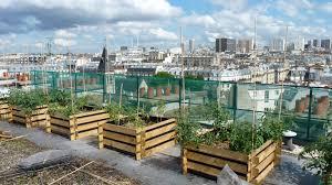 Benefits Of Urban Gardening - benefits of urban gardening u2013 greenseed