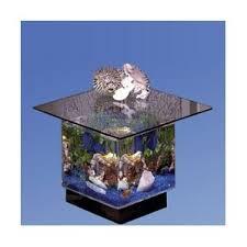 Fish Tank Reception Desk Fish Tanks U0026 Aquariums You U0027ll Love Wayfair