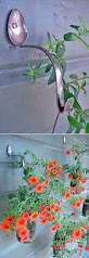 Hanging Flower Pot Hooks 273 Best Yard U0026 Plant Tips Images On Pinterest Gardening