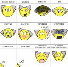 Meme Neko - neko girl emotions meme by crystalcat23 on deviantart