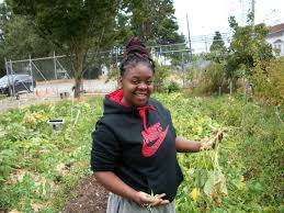 feeding tacoma harvesting food justice lincoln students grow job