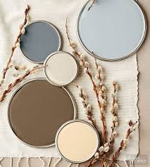 nature inspired color palettes cold temperature ash grey and stony