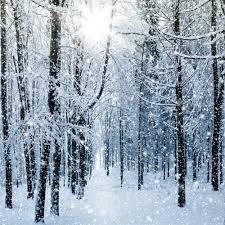 Christmas Bathroom Decor Amazon by Amazon Com 10x10ft Winter Photography Backdrops Frozen Snowflake