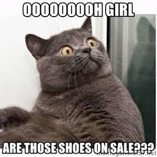 Meme Shoes For Sale - ooooooooh girl are those shoes on sale conspiracy cat meme