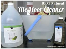 Grout Cleaner Recipe Diy Professional Ceramic Tile Grout Cleaner U2013 Amtrader