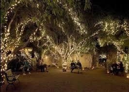 24 best tohono chul park weddings images on pinterest arizona