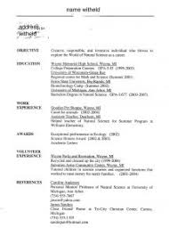 Sample Online Resume by Examples Of Resumes Sample Interview Questions The Mock Job