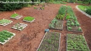 raised garden beds pallets garden on pinterest labyrinths