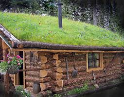 other cabin cool grass log green cabins woods hd desktop for hd