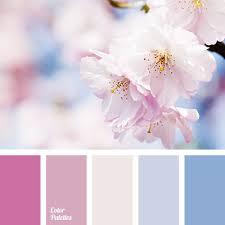 Pink Color Scheme Best 25 Pink Color Palettes Ideas On Pinterest Peach Colored