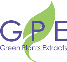 Green Plants Green Plants Extracts Innovative Botanical And Herbal Extracts