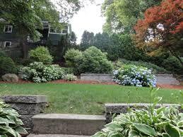 small yard descriptions photos advices videos home design