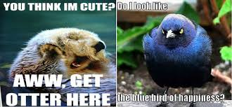 Animal Pun Meme - 7spell if animals can speak 22 animal puns you will love photos