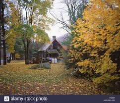small cabin in the woods small cabin in woods in fall near woodstock vermont united
