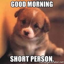 Short Person Meme - good morning short person cute puppy meme generator