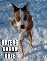 Haters Gonna Hate Meme - epic haters gonna hate memes 39 pics 1 video picture 15