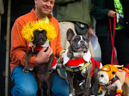 thanksgiving day dog show turkey trot 5k historic bethlehem museums u0026 sites
