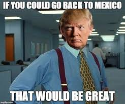 Racist Mexican Memes - 45 very funny donald trump meme images and photos of all the time