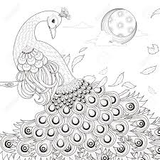 graceful peacock coloring page in exquisite style royalty free