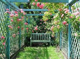 bench in trellis rose corner wd dolce pinterest