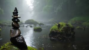 free images landscape nature forest fog sunlight river