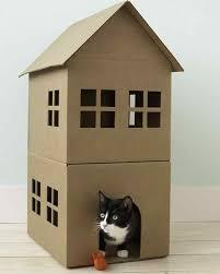 Cool Cat Furniture Diy Cat Furniture Cardboard Interior Design Ideas Amazing Simple