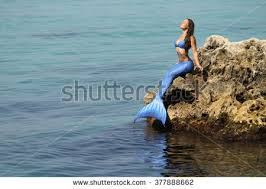 mermaid tail stock images royalty free images u0026 vectors