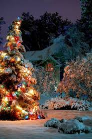 trim a home outdoor christmas decorations 25 unique exterior christmas lights ideas on pinterest
