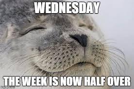 Wednesday Meme - satisfied seal meme imgflip